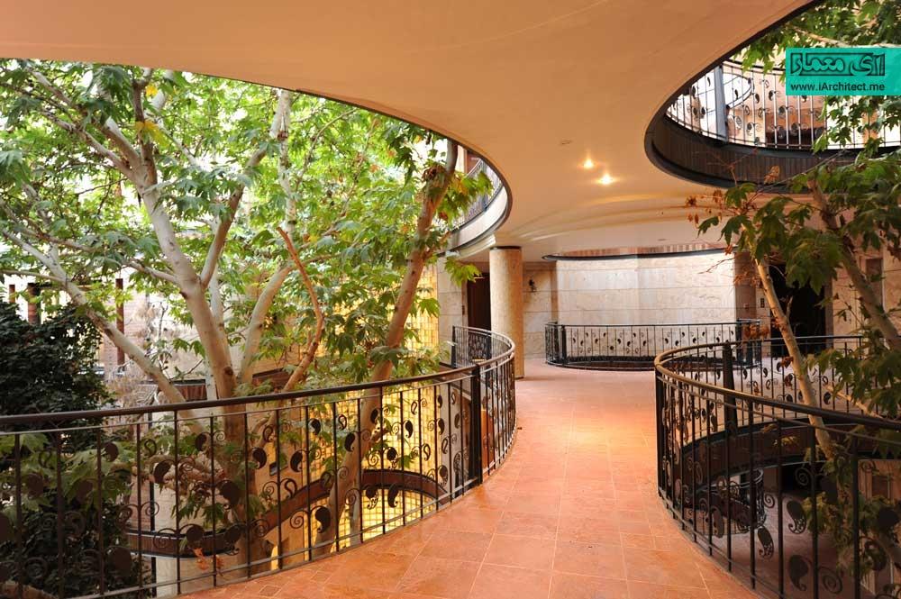 این ساختمان با معماری ارگانیک می رقصد تا درختی قطع نشود!
