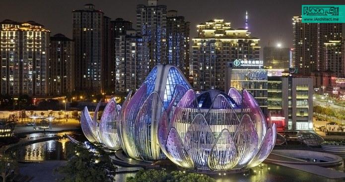 نیلوفر آبی در چین