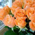 Application of orange in interior decoration-15